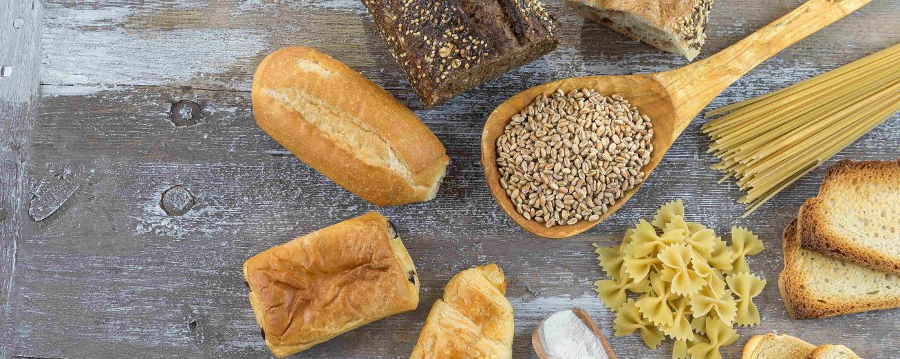 What is gluten? - Dr. Schär Institute